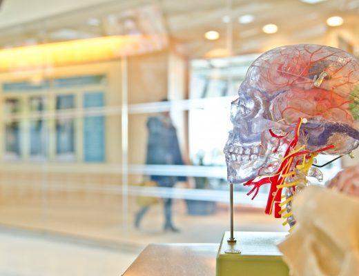Christian Opitz: Die Kopfgelenktherapie nach Robert Picard