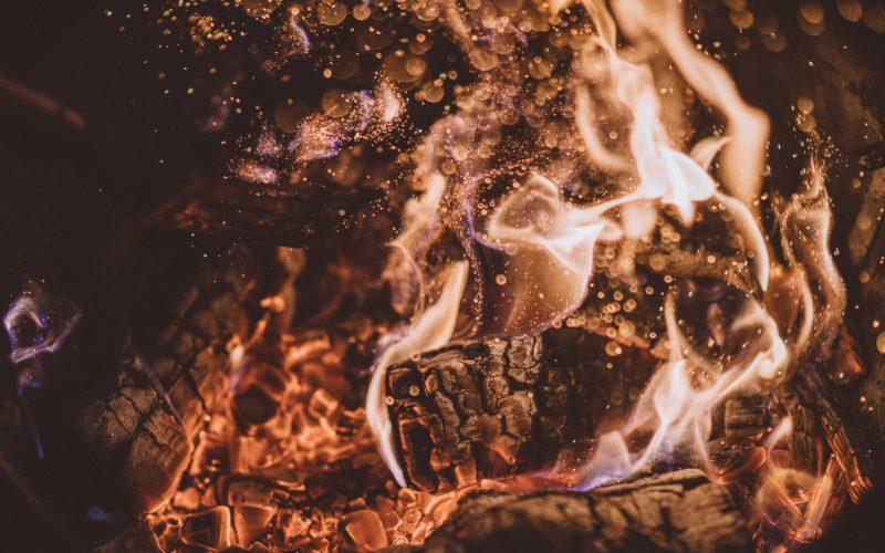 Christian Opitz: Verdauungsfeuer, die wirkliche Basis der gesunden Ernaehrung